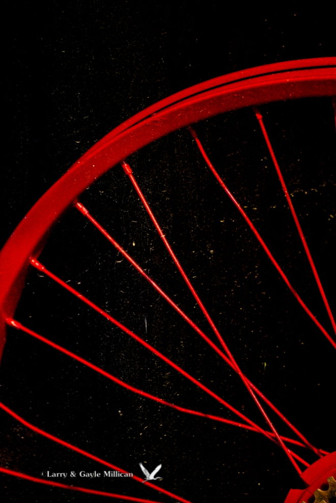 Red Bicycle Wheel Van Buren