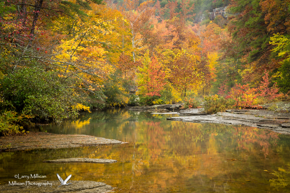 Autumn colors on Haw Creek in Arkansas