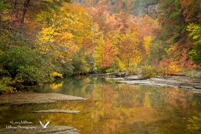 Autumn colors on Haw Creek in Arkansas
