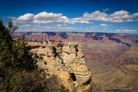 Grand Canyon 09845