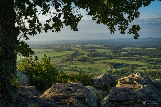 Summer Morning, Petit Jean Mountain