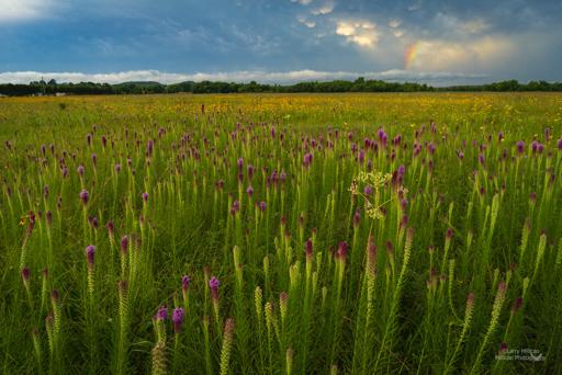 stormy morning cherokee prairie-512-6652